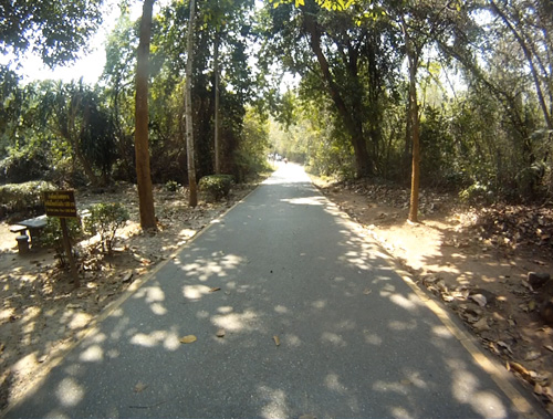 Camino-a-las-Cascadas