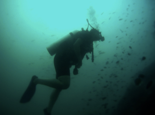 Buceo-Tania