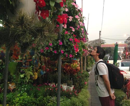 Calles-flores-Juan