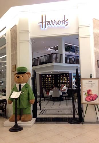 Siam-Para-Teddy-Harrots-